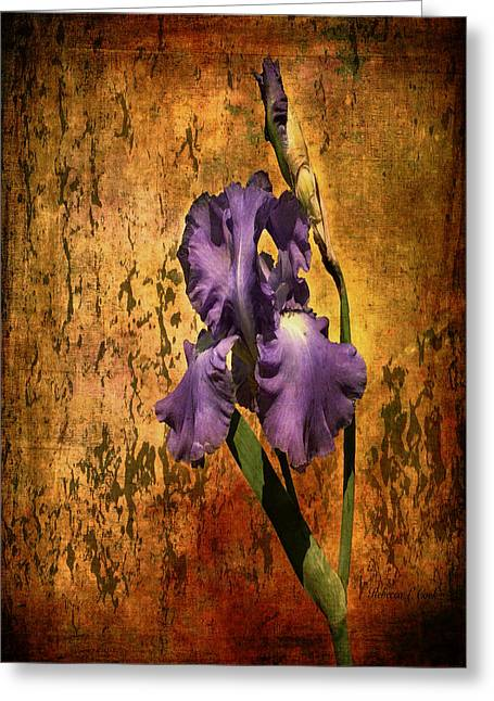 Single Mixed Media Greeting Cards - Purple Iris At Sunset Greeting Card by Bellesouth Studio
