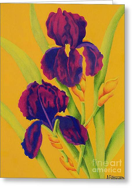 Coloured Greeting Cards - Purple Irises Greeting Card by Sharon Patterson