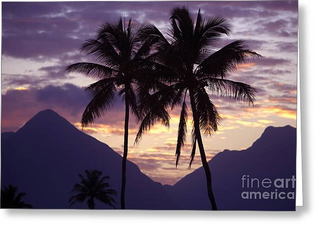 Amazing Sunset Greeting Cards - Purple Mountain Majesty Greeting Card by Ron Dahlquist - Printscapes