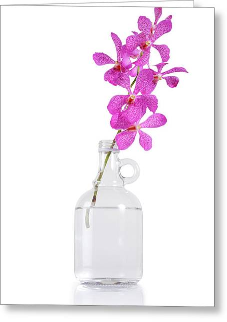 Purple Orchid Bunch Greeting Card by Atiketta Sangasaeng