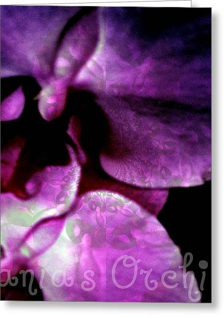 Best Sellers -  - Observer Greeting Cards - Purple Orchid Greeting Card by Fania Simon