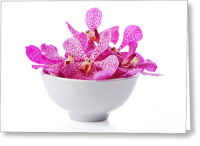 Descriptive Greeting Cards - Purple Orchid Head Greeting Card by Atiketta Sangasaeng