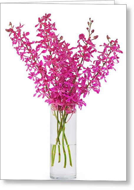 Descriptive Greeting Cards - Purple Orchid In Vase Greeting Card by Atiketta Sangasaeng