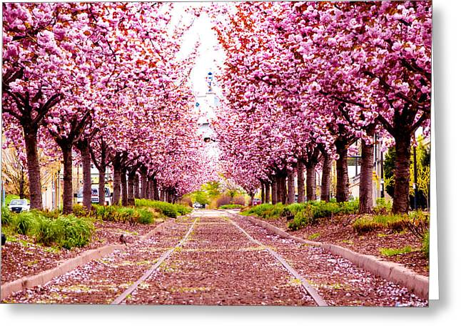 Independance Hall Greeting Cards - Purple Path Greeting Card by Greg Fortier