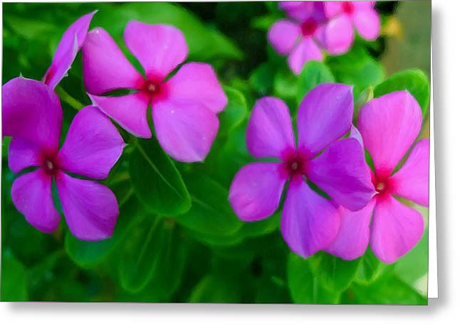 Watercress Greeting Cards - Purple Periwinkle flower 2 Greeting Card by Lanjee Chee