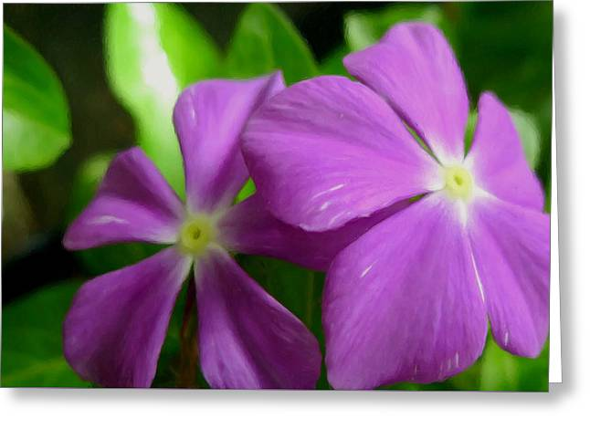 Watercress Greeting Cards - Purple Periwinkle flower Greeting Card by Lanjee Chee