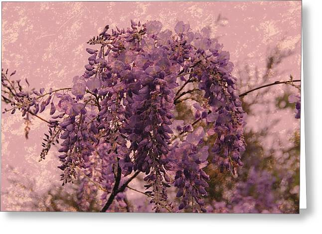 Pink Flower Branch Greeting Cards - Purple Pleasures Greeting Card by Angie Tirado