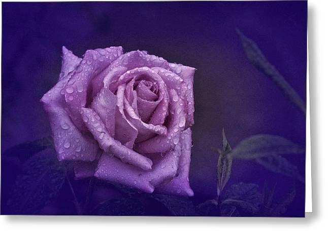 Enhanced Greeting Cards - Purple Rain Greeting Card by Richard Cummings