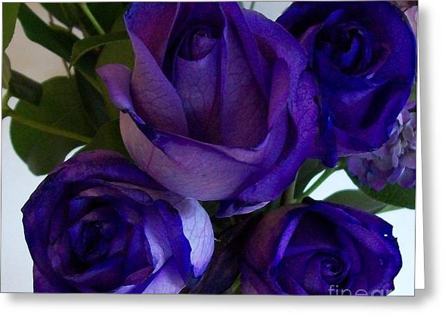 Purple Roses ll Greeting Card by Marsha Heiken
