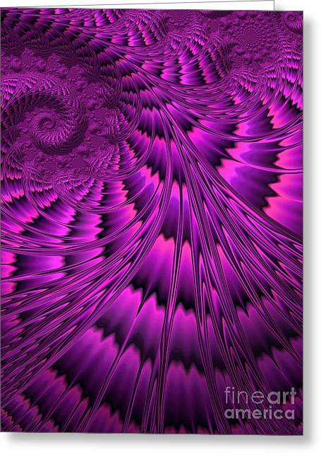 Purple Shell Greeting Card by John Edwards