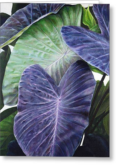 Painted Details Paintings Greeting Cards - Purple Taro Greeting Card by Sandra Blazel - Printscapes