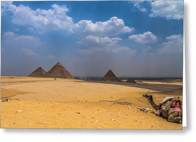 Pyramids Greeting Cards - Pyramids of Giza  Greeting Card by Julis Simo