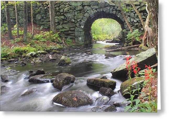 Quabbin Reservoir Keystone Bridge And Cardinal Flowers Greeting Card by John Burk