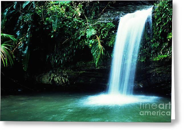 Puerto Rico Greeting Cards - Quebrada Juan Diego Waterfall Mirror Image Greeting Card by Thomas R Fletcher