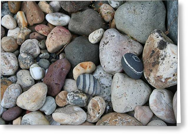 Queen Charlotte Island Stones Greeting Card by Sherry Leigh Williams