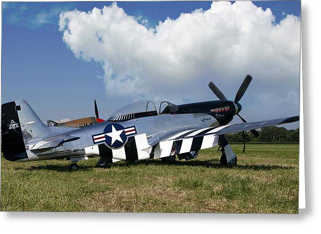 Quick Greeting Cards - Quick Silver P-51 Color Greeting Card by Peter Chilelli