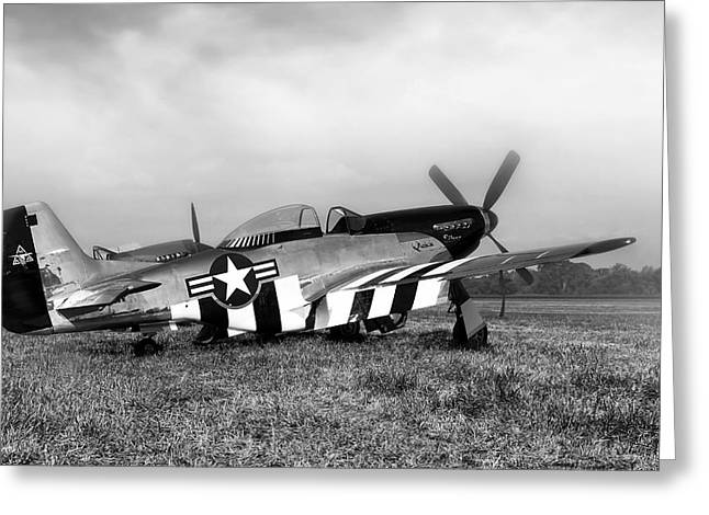 Quick Greeting Cards - Quick Silver P-51 Mustang Greeting Card by Peter Chilelli