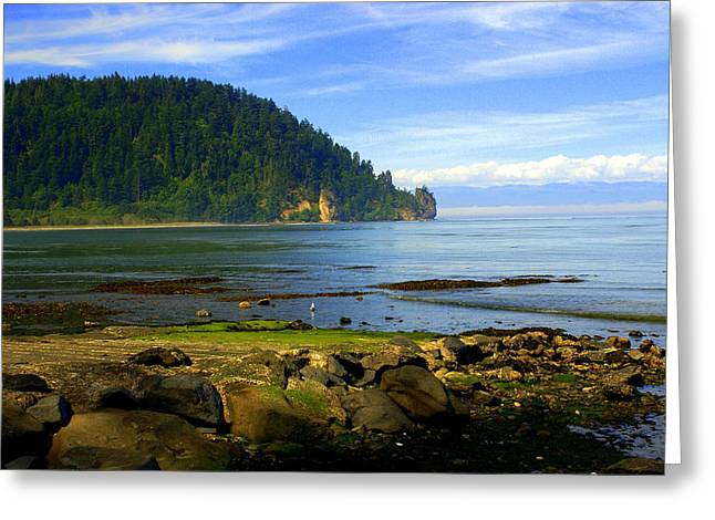 Marty Koch Greeting Cards - Quiet Bay Greeting Card by Marty Koch