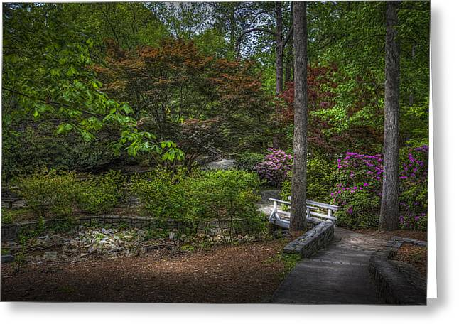 Quiet Beauty Greeting Card by Marvin Spates