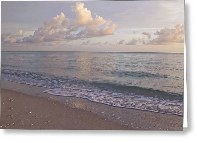 South West Florida Greeting Cards - Quiet Evening Greeting Card by Kim Hojnacki