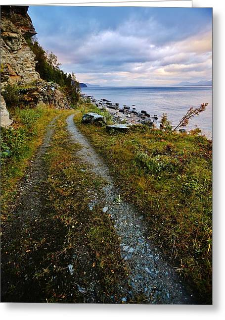 Norwegian Sunset Greeting Cards - Quiet Fjordland Road Greeting Card by David Broome