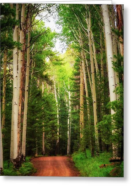 Paradise Road Greeting Cards - Quiet My Soul Greeting Card by Rick Furmanek