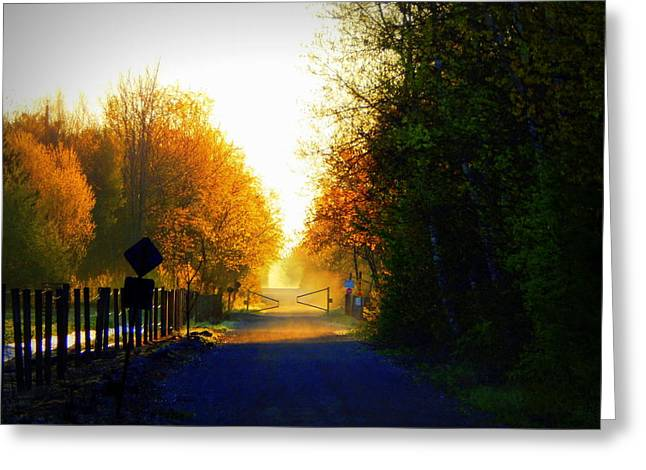 Annapolis Valley Greeting Cards - Quiet of the morning Greeting Card by Karen Cook