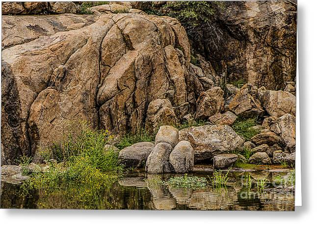 Watson Lake Greeting Cards - Quiet Reflections Watson Lake Prescott AZ Greeting Card by Marti Huzarski