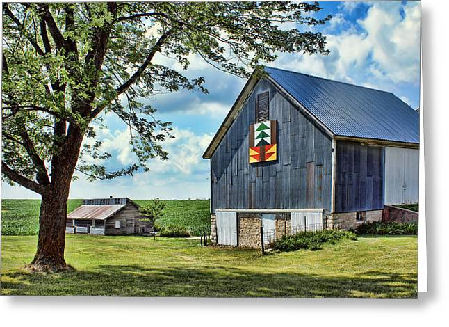 Outbuildings Greeting Cards - Quilt Barn - Nebraska - Forest for the Trees Greeting Card by Nikolyn McDonald