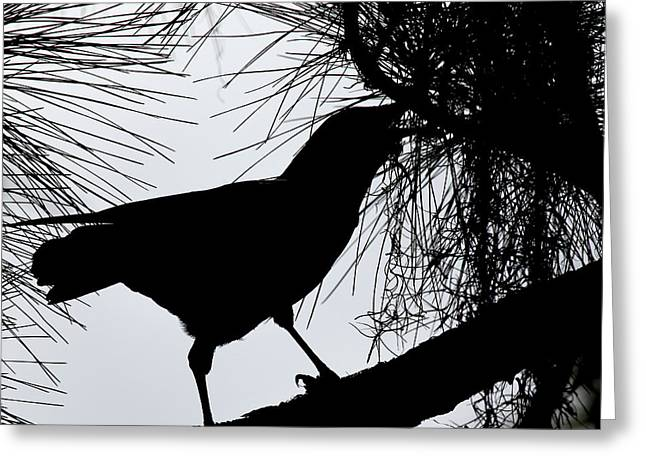 The Ravens Greeting Cards - Quoth the Raven  Nevermore Greeting Card by Joseph G Holland