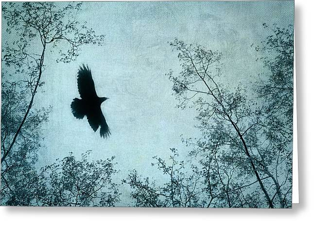 Corvus Greeting Cards - Spread your wings Greeting Card by Priska Wettstein
