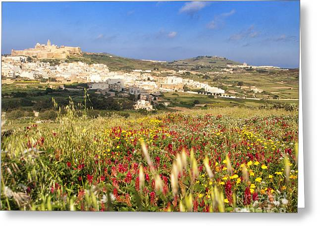 Rabat Gozo Greeting Card by White Stork Gallery