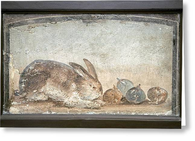 Herculaneum Greeting Cards - Rabbit And Figs, Roman Fresco Greeting Card by Sheila Terry