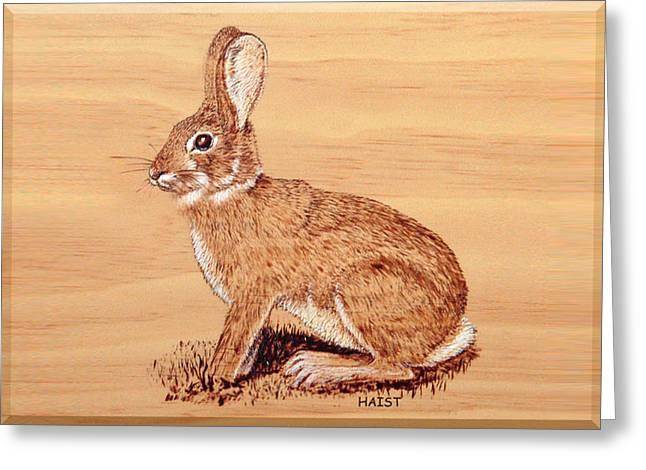 Rabbit Greeting Card by Ron Haist