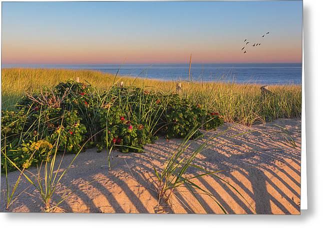Race Point Beach Sunrise Greeting Card by Bill Wakeley