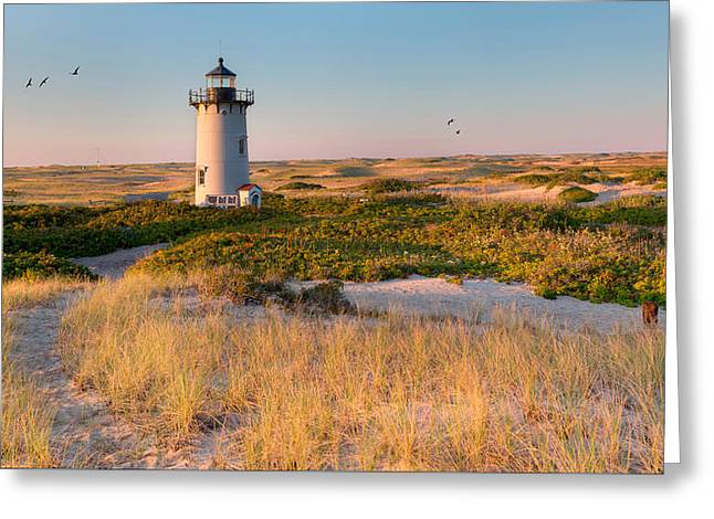 Race Point Light Sand Dunes Greeting Card by Bill Wakeley