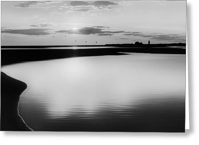 Race Point Silhouette Bw Greeting Card by Bill Wakeley