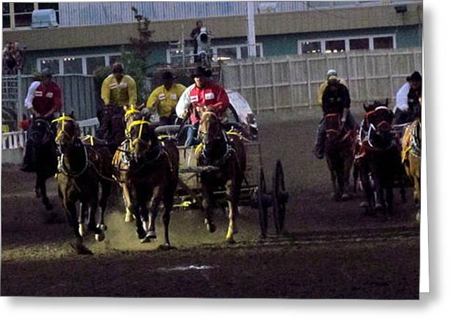 Race Horse Greeting Cards - Race to the Line Greeting Card by Andrea Arnold