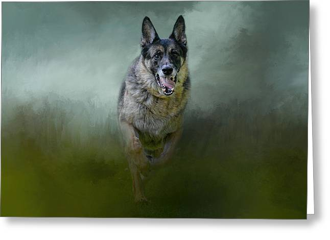 Guard Dog Greeting Cards - Racing The Storm Greeting Card by Jai Johnson