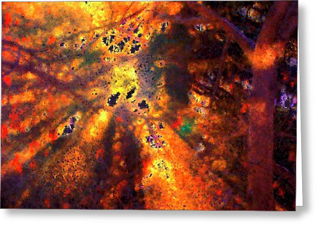 Radiant Ice Crystals - Winter Storm Abstract Greeting Card by Rayanda Arts