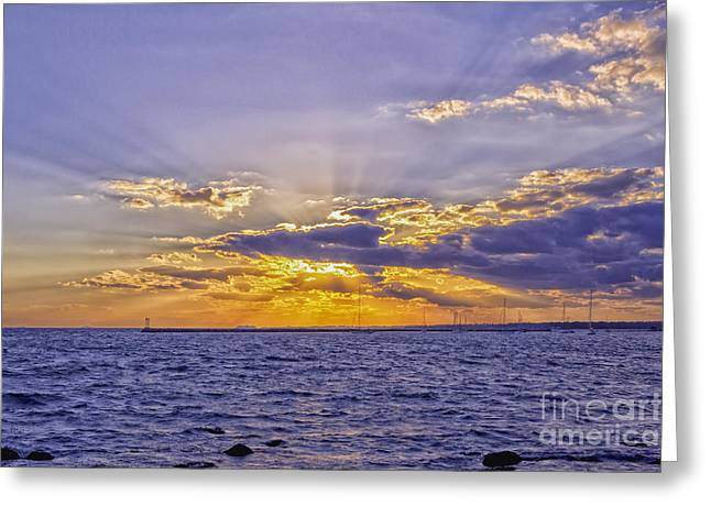 Renewing Greeting Cards - Radiant Greeting Card by Joe Geraci