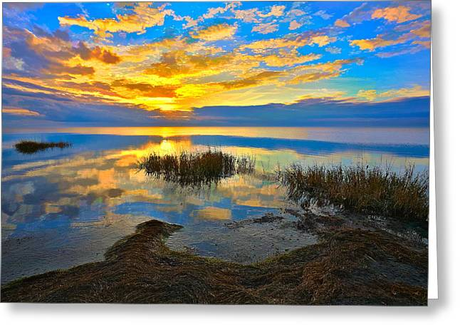 Dan Carmichael Greeting Cards - Radical Sunset over Pamlico Sound Outer Banks Greeting Card by Dan Carmichael