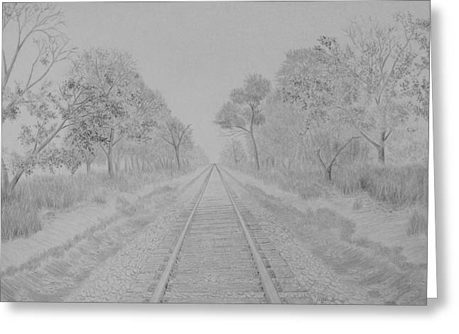Railroad To Nowhere Greeting Card by Kyle Homer