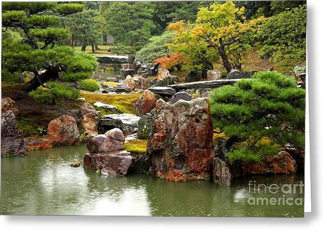 Rain On Kyoto Garden Greeting Card by Carol Groenen