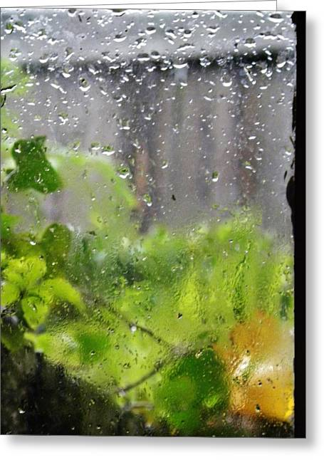 Basement Greeting Cards - Rain on the Window Greeting Card by CL Redding