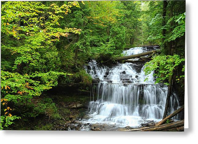 Nature Scene Greeting Cards - Rain on Wagner Falls Greeting Card by Rachel Cohen