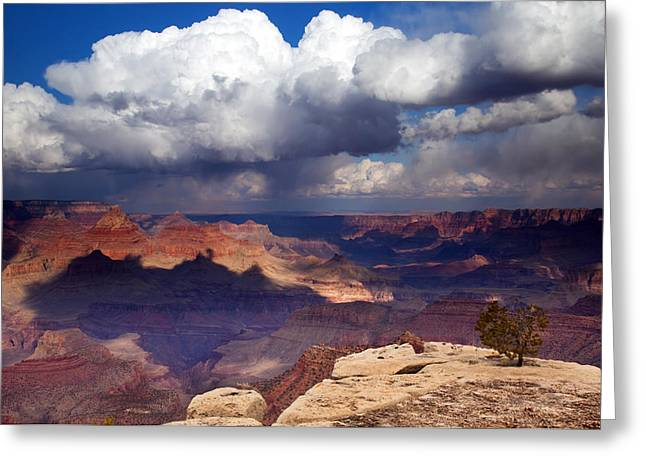 Plateau Greeting Cards - Rain over the Grand Canyon Greeting Card by Mike  Dawson