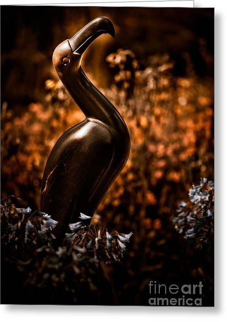 Mystic Art Greeting Cards - Rainbird Greeting Card by Venetta Archer