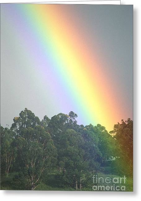 Rainbow And Misty Skies Greeting Card by Erik Aeder - Printscapes