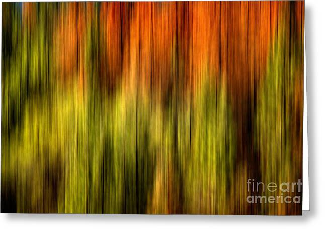Blur Photography Greeting Cards - Rainbow Delight Greeting Card by Az Jackson